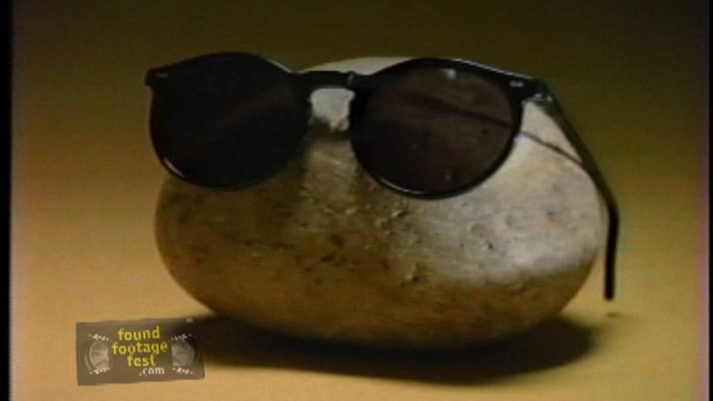 Pet Rock